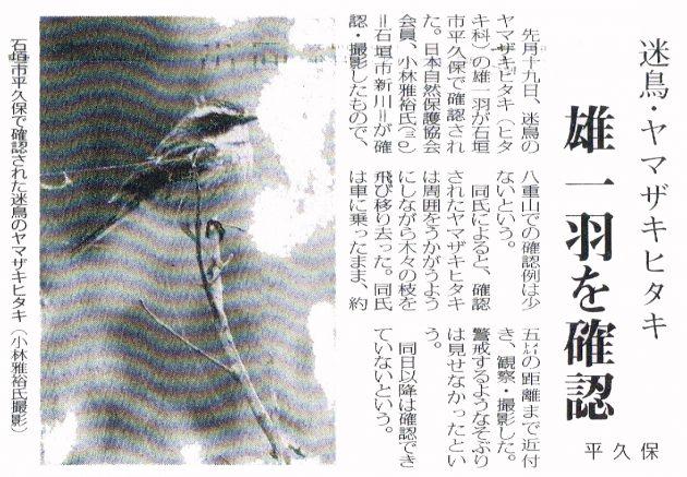 h17.4ヤマザキヒタキ