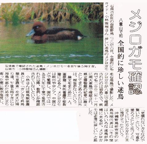 mejirogamo-ryuukyuushinnpou