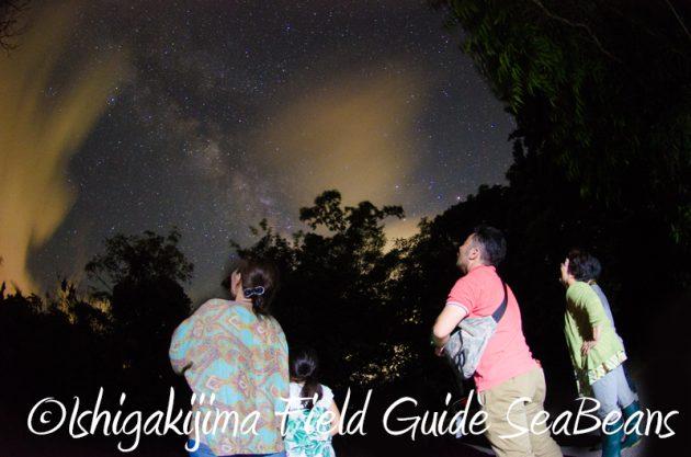 7月31日 石垣島ナイトツアー18