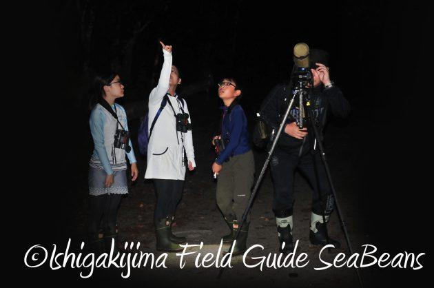 8月13日石垣島ナイトツアー18