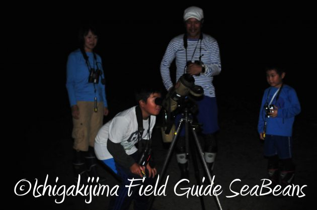 8月15日石垣島ナイトツアー16