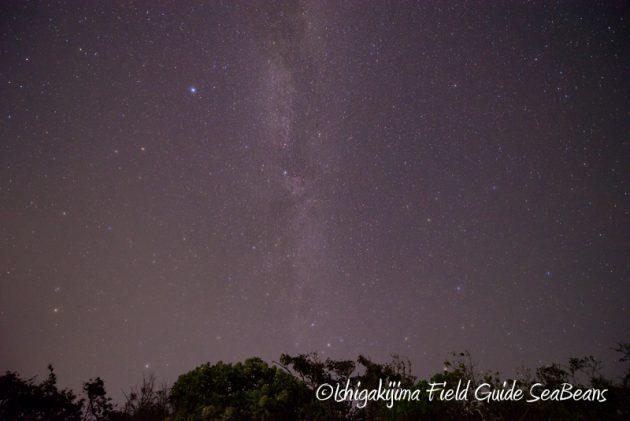 8月4日石垣島の星空2