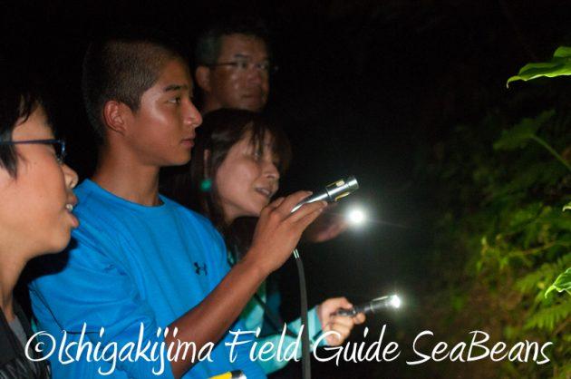 8月1日 石垣島ナイトツアー11